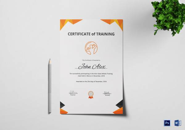 23 Training Certificate Templates Free Samples Examples Format