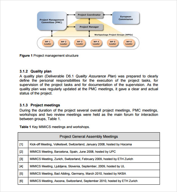 Project Management Report Template  Business Monthly Report