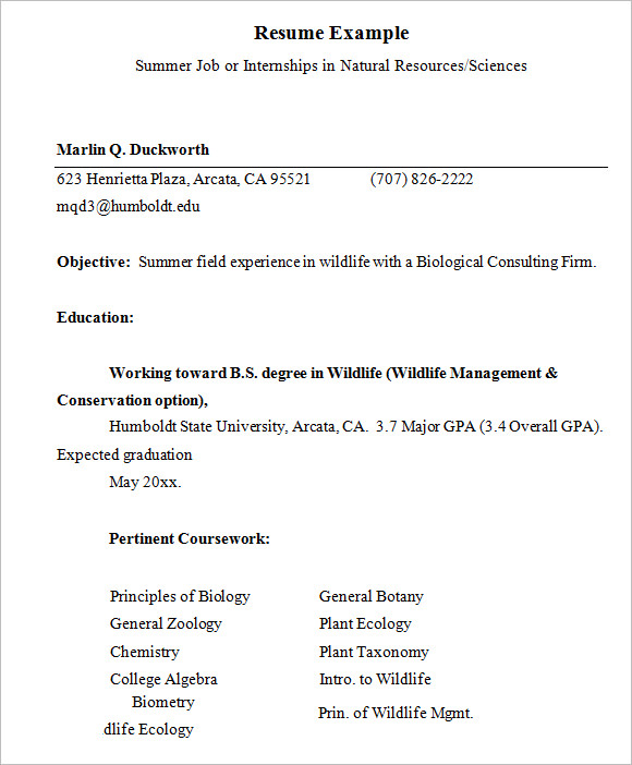 Resume Example For Summer Internship