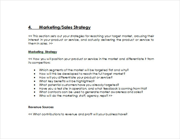 Sample Sales Plan 9 Example Format