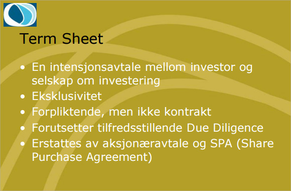 Sample Term Sheet   Example Format