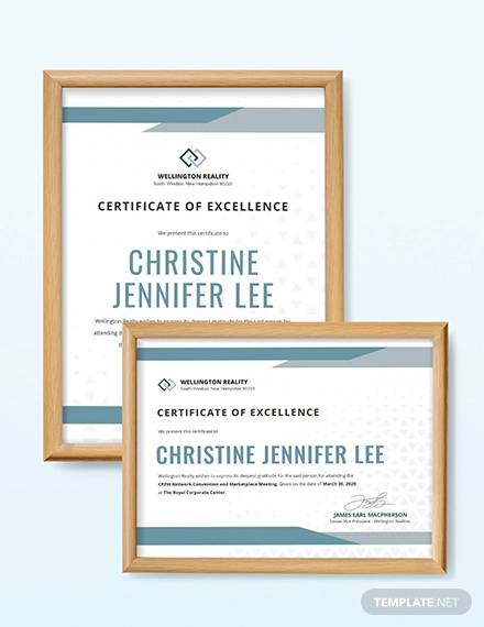 simple certificate of excellence