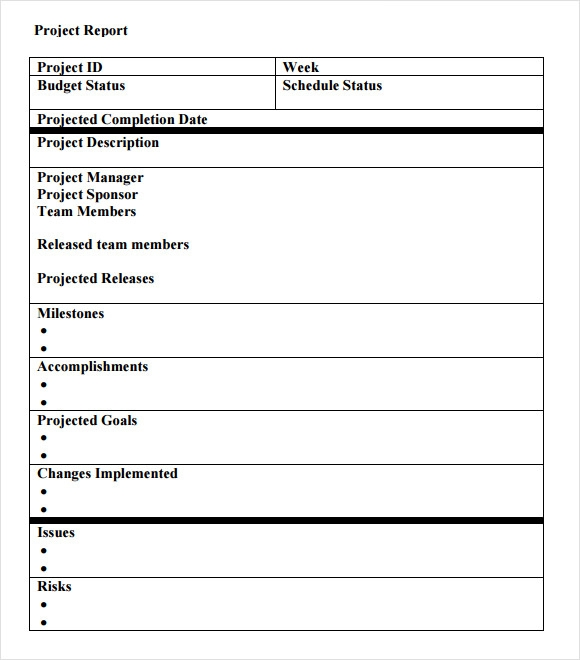 Sample Project Status Report   Examples  Format