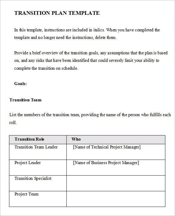 Transition Plan Template 8 Free Samples Examples Format – Transition Plan Template