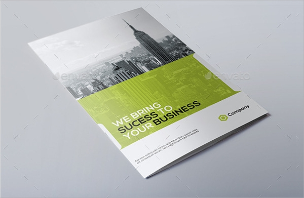 business brochure1