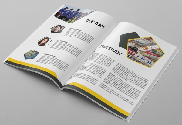 business proposal brochure