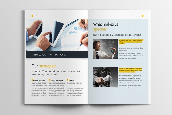 pdf format business brochure