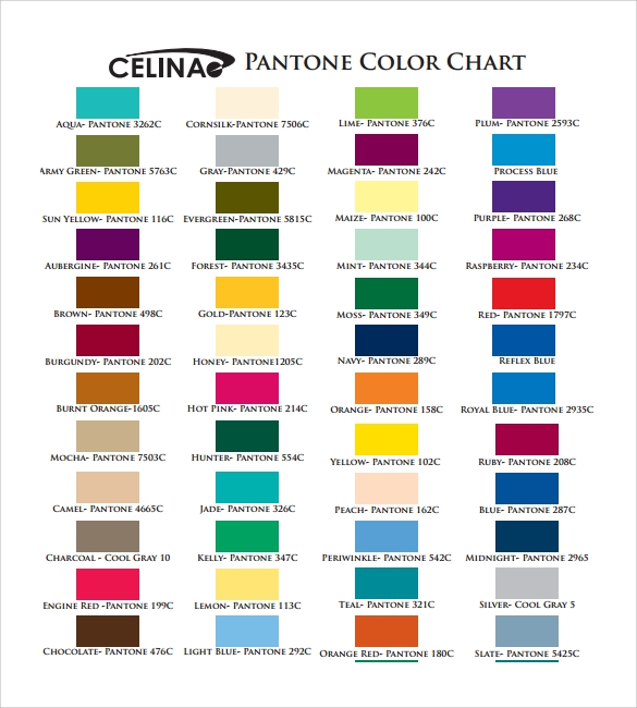 Sample Pms Color Chart   Examples Format