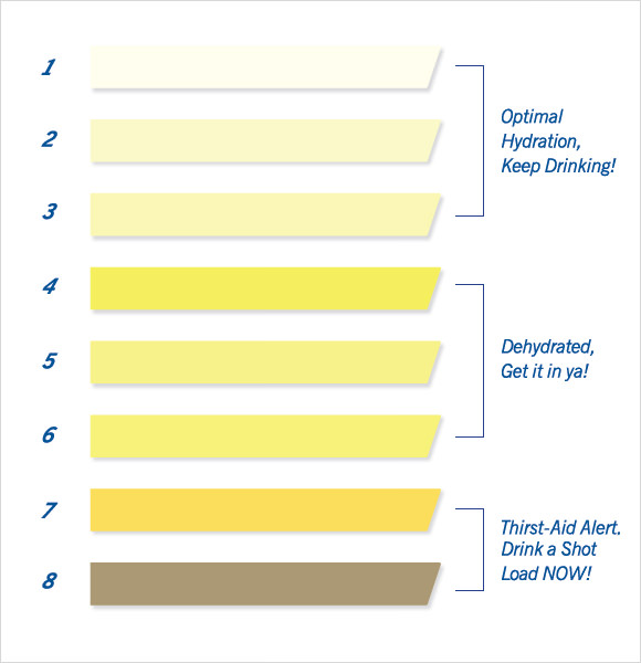 Standardized Urine Color Charts Pictures to Pin – Sample Urine Color Chart