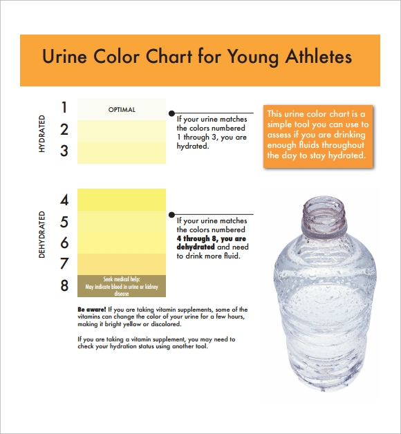 urine color chart for athletes