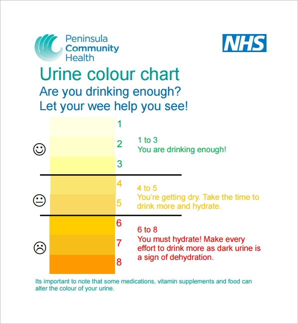 Urine Color Charts  Free Sample Example Format