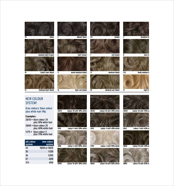 hair color chart for free to print