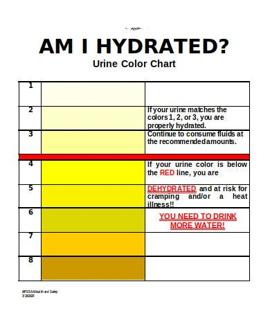 general urine color chart