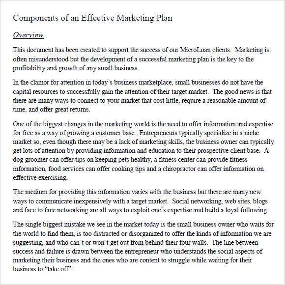 marketing plan literature review In this lesson, we will learn what a marketing plan is and why it is so important for a business to have one we will cover the specific strategies.