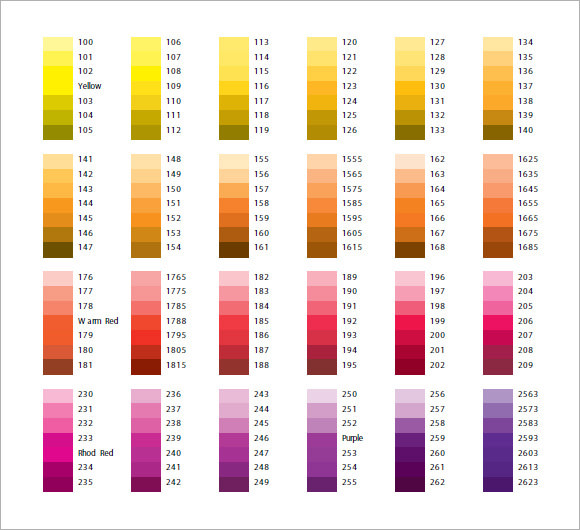 Sample Pantone Color Chart   Documents In Pdf Word