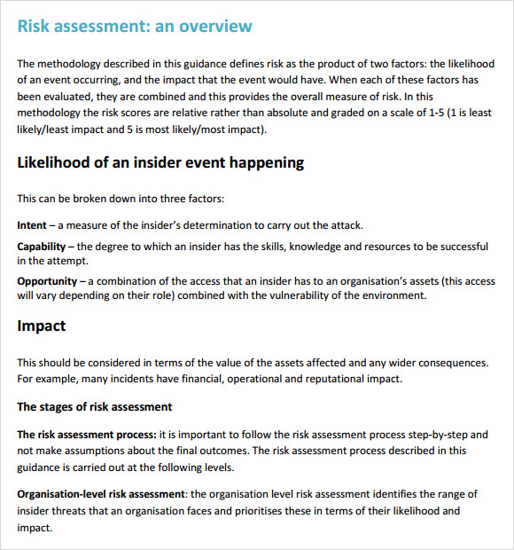 Sample Risk Assessment - 8+ Example, Format