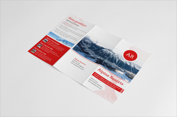 travel brochure lesson plan