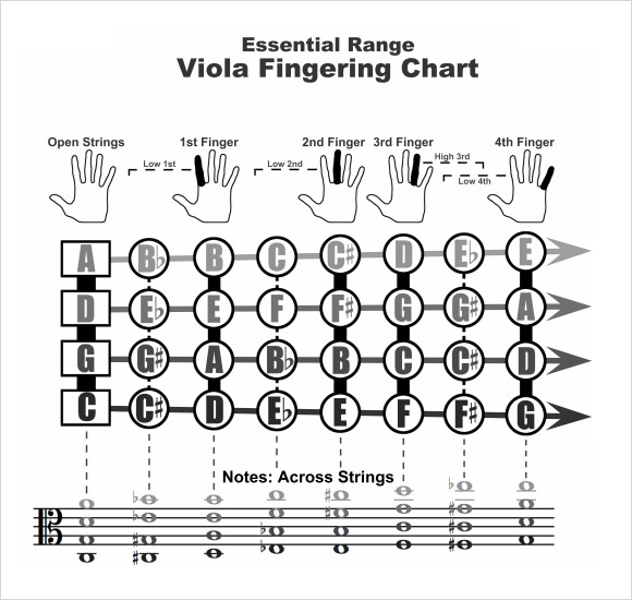 Sample Violin Fingering Chart   Free Documents In Pdf  Word