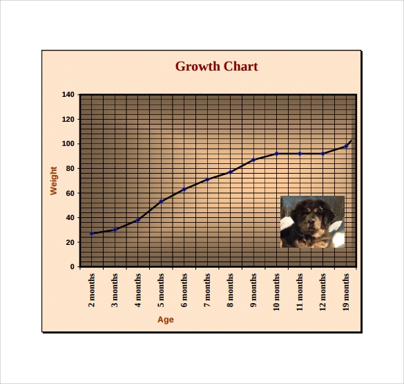 Sample Puppy Growth Chart   Documents In Pdf
