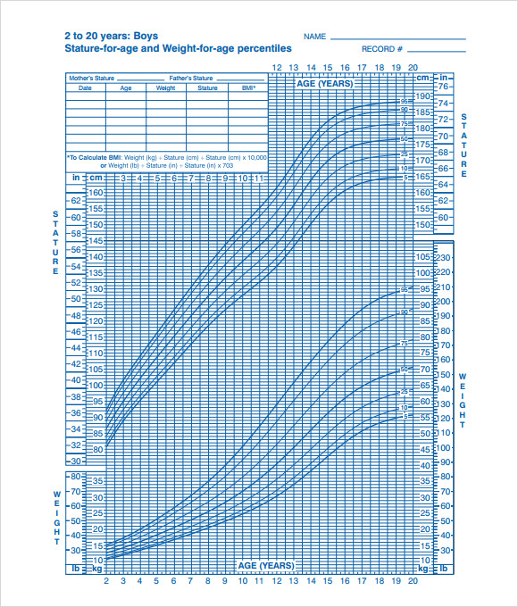 Sample Cdc Growth Chart - 9+ Documents In Pdf