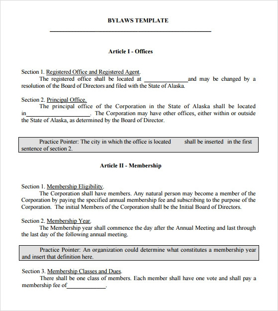 7 bylaws templates sample templates for S corp bylaws template