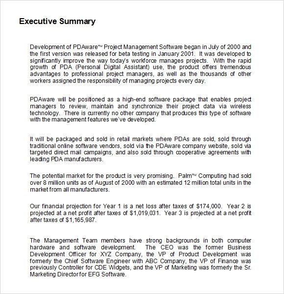 executive summary template word – Sample Project Summary Template