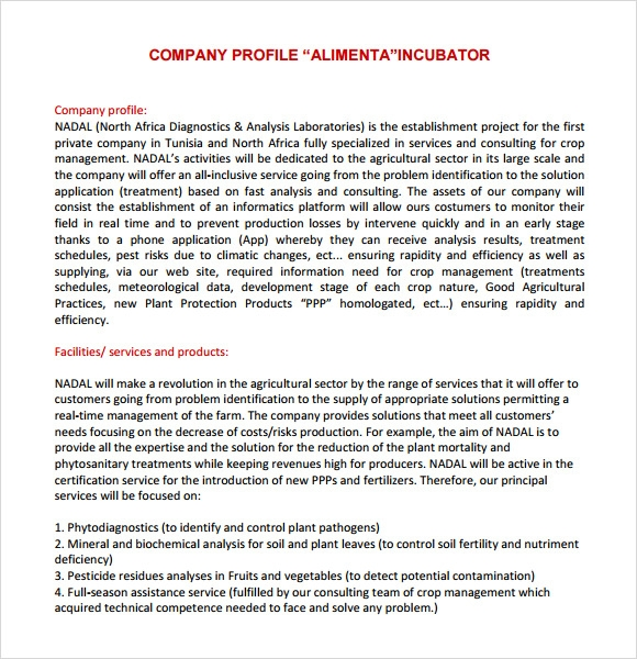 Doc Brief Company Profile Sample Brief Company Profile Sample – Firm Profile Format