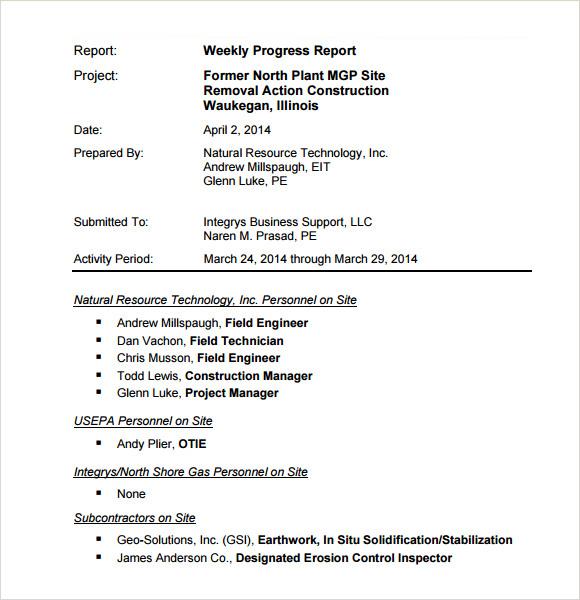 word progress report