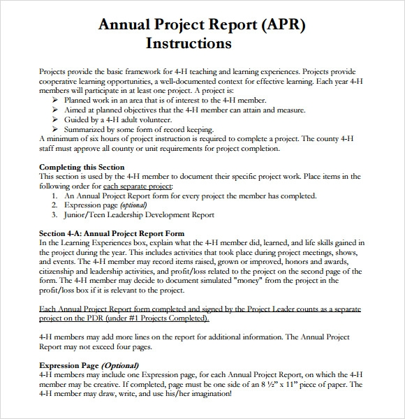 annual project report template