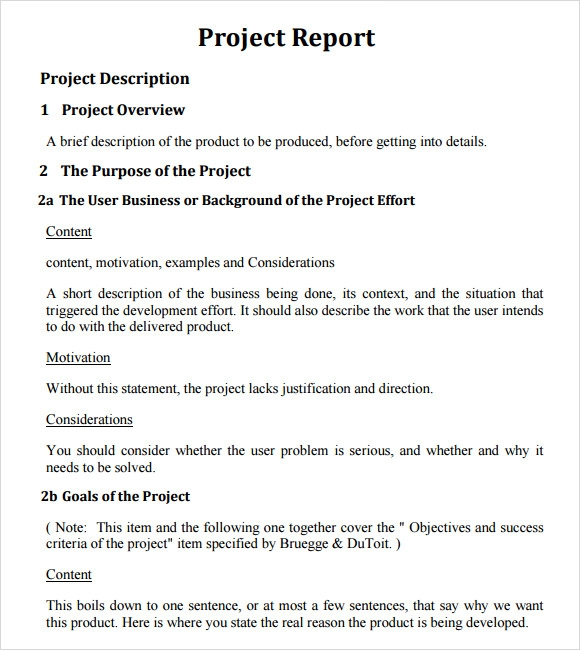 Sample Project Report Template - 6+ Documents in PDF