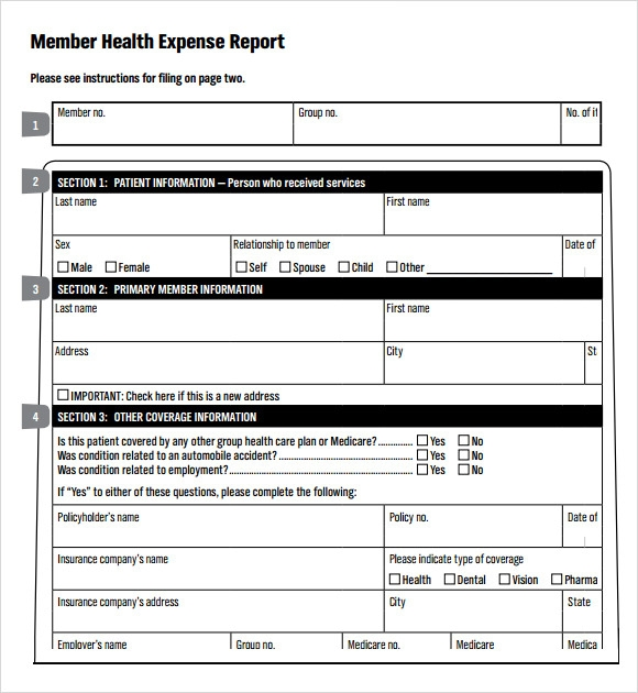 sample expense report template .