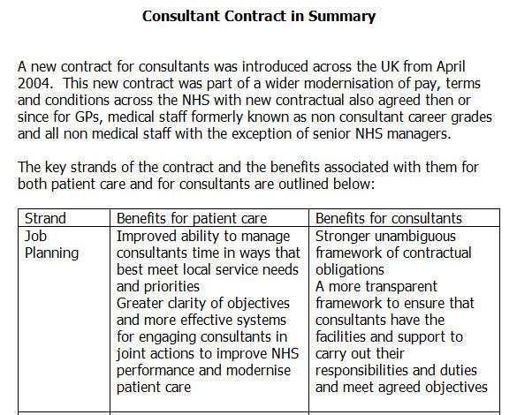 consultant contract in summary1