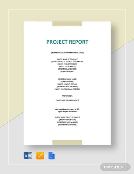 investor project report