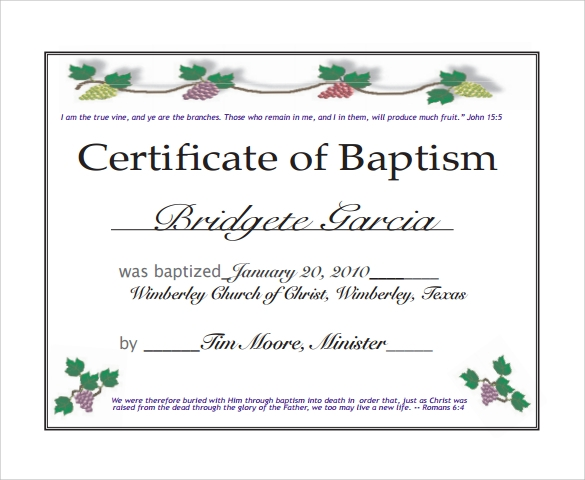 Sample Baptism Certificate   Documents In Pdf Word Psd