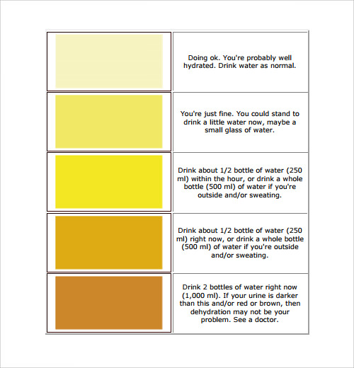 urine color chart for hydration