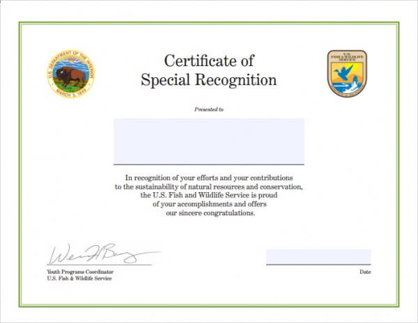 Sample Congratulations Certificate - 22+ Documents In Pdf, Word, Psd