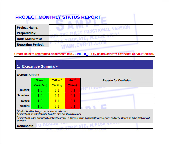 monthly management report template in pdf