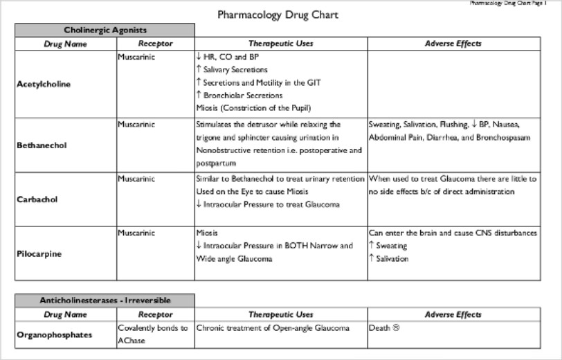 Sample Drug Classification Chart   Documents In Pdf