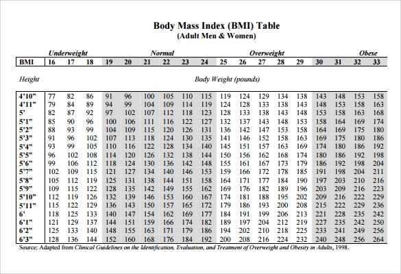Bmi Chart Templates   Download Free Documents In Pdf Word