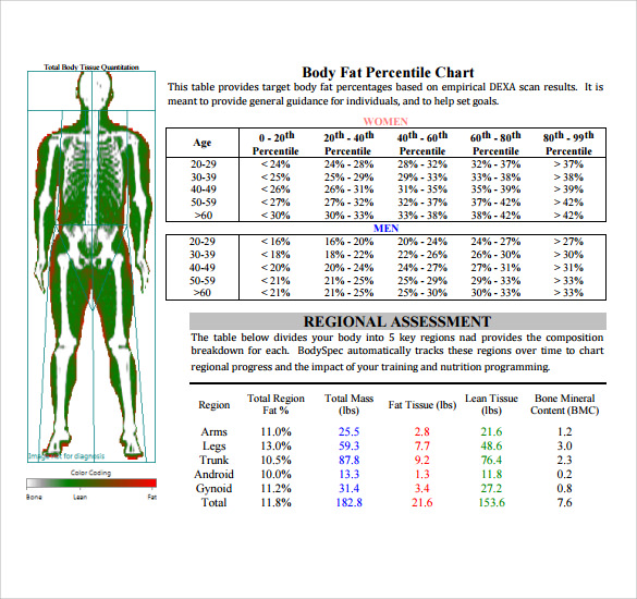 Sample Body Fat Percentage Chart Template - 7+ Free Documents In