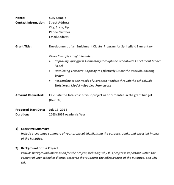 Sample Professional Proposal   Examples Format