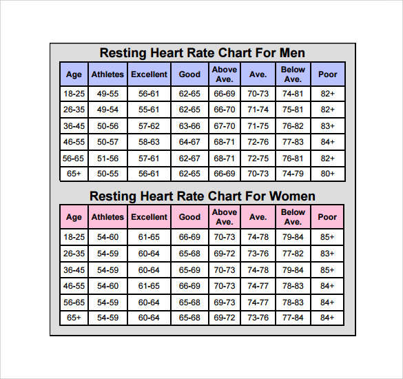 Sample Heart Rate Chart Template   Free Documents Download In Pdf