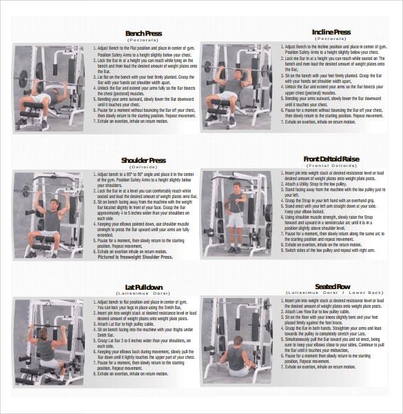 exercise chart pdf