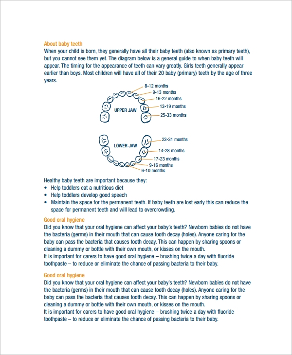 Sample Baby Teeth Chart 5 Documents in PDF – Teeth Chart Template