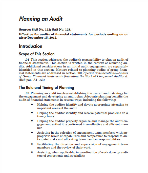 Sample Audit Plan   Documents In Word Pdf