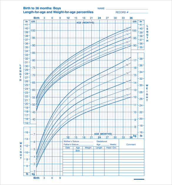 Sample Baby Growth Chart 6 Free Documents in PDF – Baby Growth Chart Template