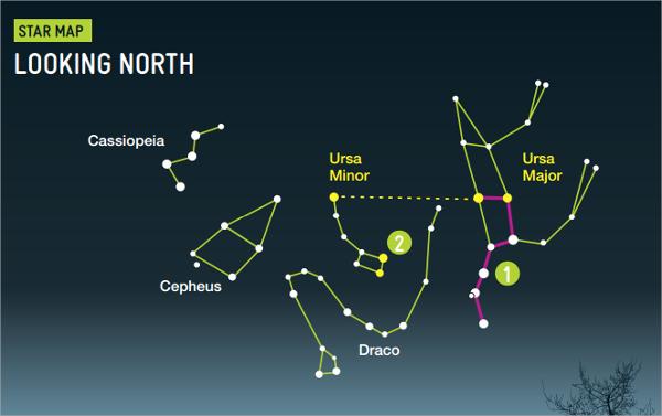 star chart template pdf download
