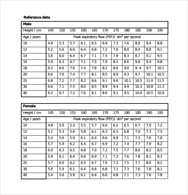 Wonderful Sample Chart Template U2013 Download Free Documents In PDF , Word ,Excel