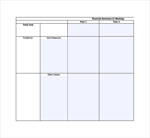 Budget Summary Templates   Free Samples Examples  Formats