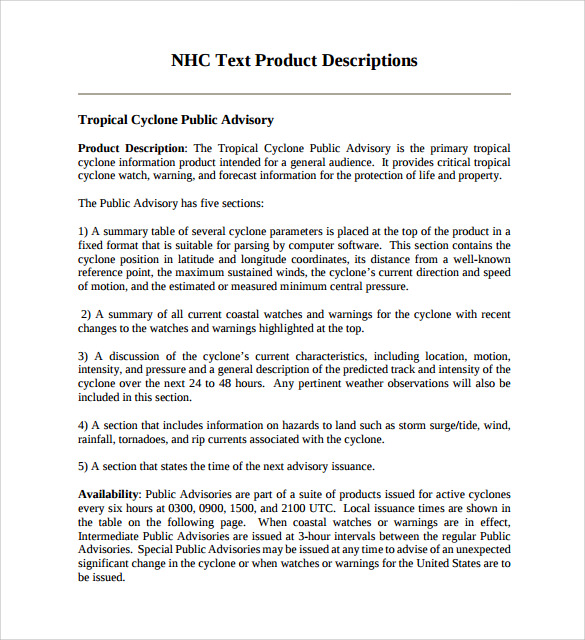 Product Description Template    Free Samples  Examples  Format